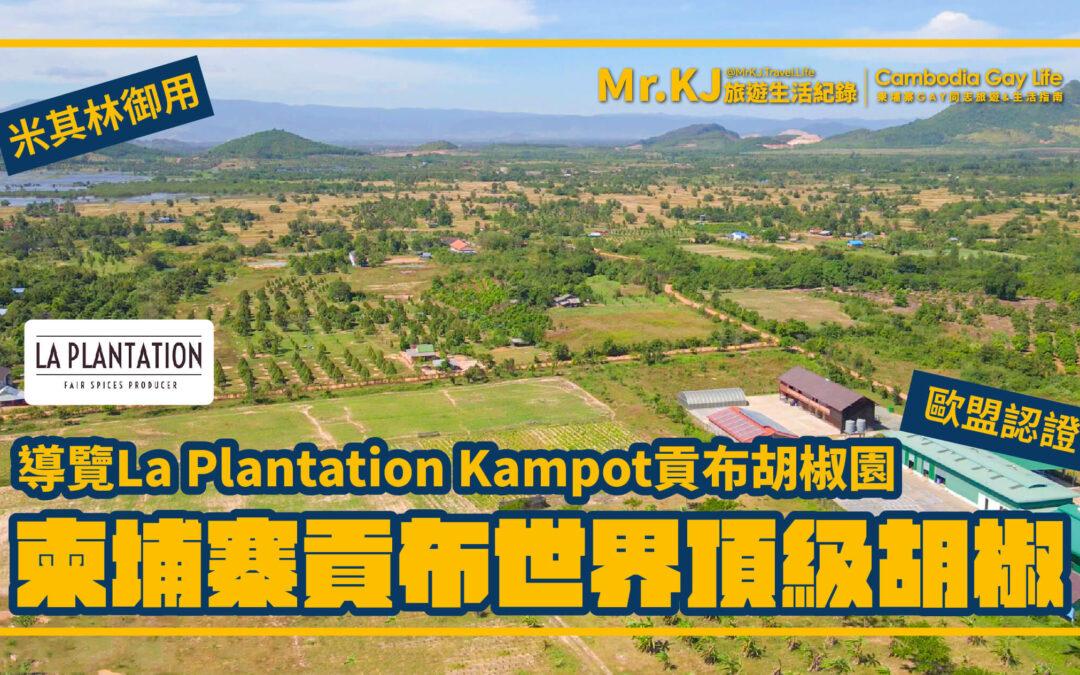 柬埔寨貢布世界頂級胡椒 – 導覽La Plantation Kampot貢布胡椒園